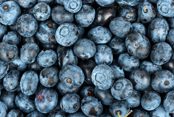 Background fresh blueberries