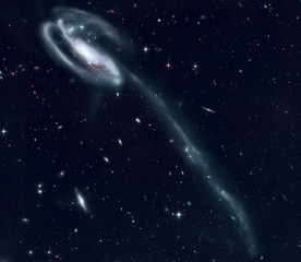 The Tadpole is a barred spiral galaxy in the constellation Draco