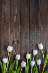 White tulips laid out on a dark wooden table as the frame.