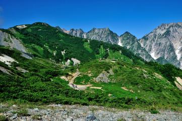 長野県白馬村 夏山の八方尾根自然研究路 登山