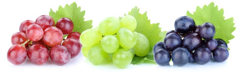 Trauben Weintrauben rot blau grün Früchte Frucht Obst Freistel
