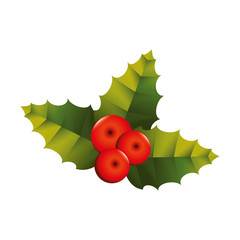 christmas plant leaf icon vector graphic