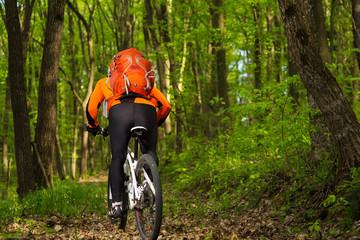 Biker in orange jersey on the forest road
