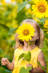 beautiful little girl in sunflowers