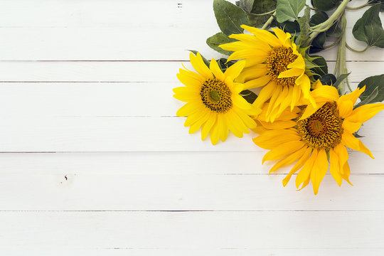 Background with a bouquet of sunflowers on a white painted woode