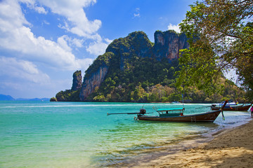 Cliff tropical sea landscape in Phang nga bay