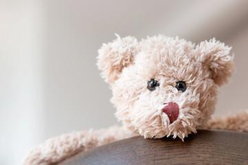Teddy bear so cute on wood table