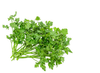 Bunch of parsley on a light background