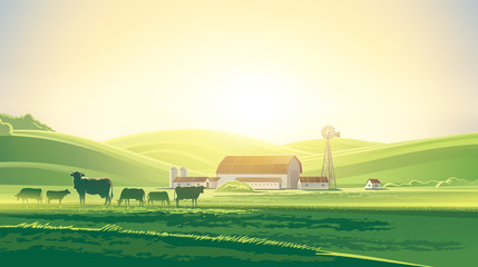 Rural dawn landscape with milk farm and herd cows.