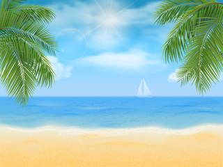 sea beach and palm tree