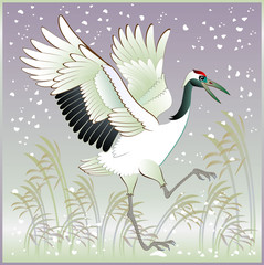Illustration of beautiful crane in winter, vector cartoon image.