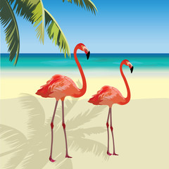 Two flamingo birds at Tropic Beach. Summer Vector Travel card. Exotic background