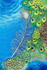 Original painting of peacock feathers