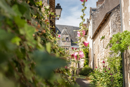 Scene in Crissay Sur Manse, village in the Loire Valley