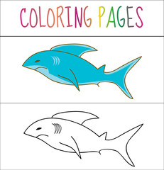 Coloring book page, shark. Sketch and color version. Coloring for kids. Vector illustration