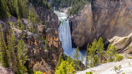 Big waterfall among the beautiful rocks. Mountain landscape. Fir forest growing on the sharp rocks. Lower falls from Uncle Toms Trail on The Grand Canyon of the Yellowstone National Park, Wyoming