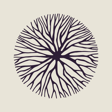 Concept tree branch circle shape illustration