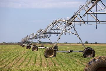 Sprinkler irrigation system on agriculture field