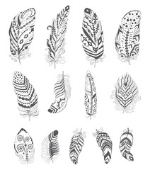 Set of Ornamental Boho Style Feather.