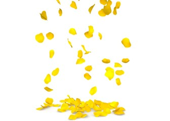 Yellow rose petals flying on the floor