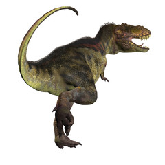 T-Rex Dinosaur Tail - Tyrannosaurus Rex was a carnivorous dinosaur that lived in the Cretaceous Period of North America.