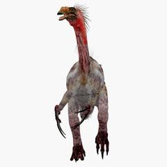 Therizinosaurus Dinosaur on White - Therizinosaurus was a carnivorous theropod dinosaur that lived in the Cretaceous Period of Mongolia.