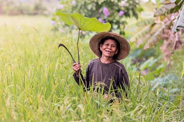 farmer Thailand.