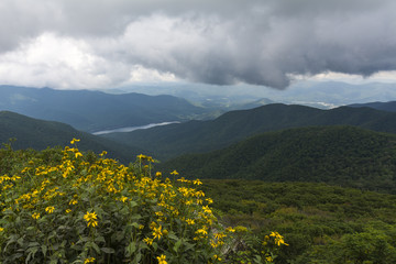 Craggy Gardens Overlook, Asheville North Carolina