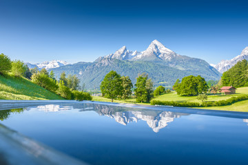 Watzmann reflecting in a little pool, Berchtesgaden,Bavaria, Germany Wall mural