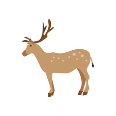 brown deer icon