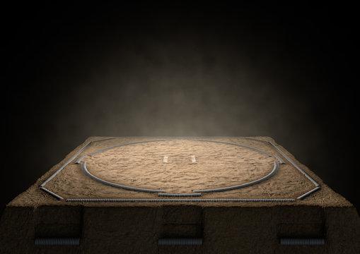 Sumo Ring Empty