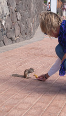chipmunk funny animal with Woman Fuerteventura island Canarian Islands