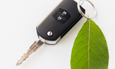 close up of car key and green leaf