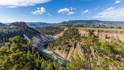 Stormy river flows in a narrow gorge in the rocks. Amazing mountain landscape. Fir forest growing on the sharp rocks. Calcite Springs Overlook, Yellowstone National Park, Wyoming