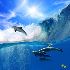 Wall Mural - Oceanview with sunlight. A flock of playful dolphins swimming underwater and one of them leaping out from big sea surfing wave