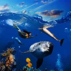 sealife underwater scene beautiful mermaid wearing golden tail swimming and playing with funny dolphins