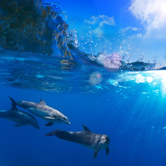 A small flock of dolphins playing in sunrays underwater underneath of breaking wave