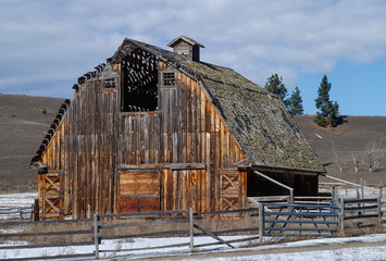 Large Old Barn with Beautiful Colorful Woodgrain