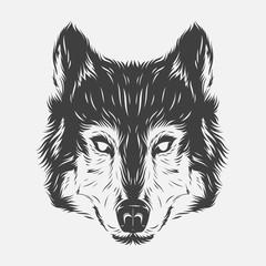 Wolf head hand draw