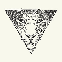 Abstract  tiger head. Hand draw