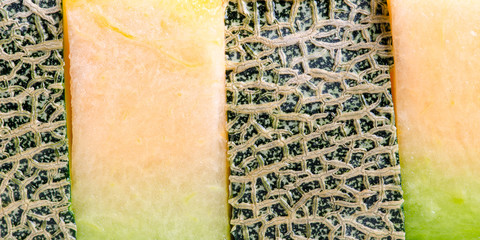 Cantaloupe melon background.