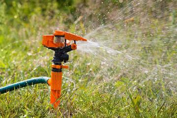 garden sprinkler watering the grass