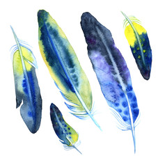 Watercolor feather set in blue and violet colors.