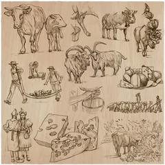 agriculture, Cheesemaking - hand drawn vector set.