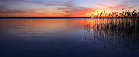 Photo sur Plexiglas Lac / Etang Sunset on a Lake with Reeds