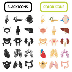 Set of sixteen human organs and anatomic parts color and black flat icons
