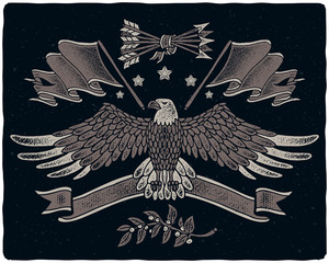 Graphic illustrations set in American style. Grunge texture hand drawn images of bald eagle spreading his wings, flag, ribbon, arrows and laurel branch