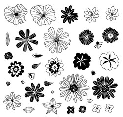 Flowers in doodle style. Set of hand drawn dlowers, elements for