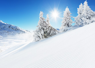 Wall Mural - Beautiful winter landscape with ideal piste