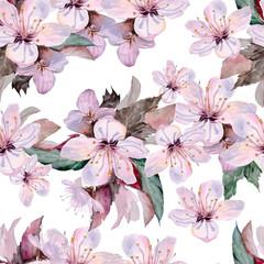 Flowers of apple .Watercolor painting.